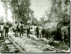 railroad_Logging